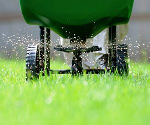 торове за тревни площи
