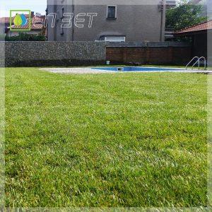 """Изграждане на тревна площ с чим """"Херкулес"""" от фирма """"ЕЛ ЗЕТ"""""""